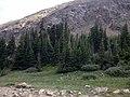 Bill Moore Lake - panoramio (1).jpg