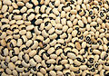 Black-eyed beans.jpg