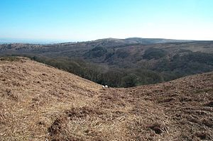 English: Black Ball Hill. Looking east down th...