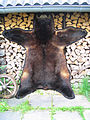 Black bear fur skin (1).jpg