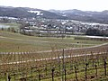 Bollschweil, Germany - overview towards SW.jpg