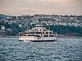 Bosphorus, Istanbul (P1100299).jpg