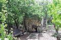 Botanical Garden on Mount Scopus visit 2011 44.JPG