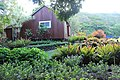 Botanical Gardens Kauai, Hawaii - panoramio (13).jpg