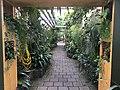 Botanische tuinen Utrecht 66.jpg