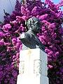 Bougainvillea Bust (5963392808).jpg