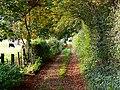 Bridleway to Ashley Barn, near Tolpuddle - geograph.org.uk - 588413.jpg