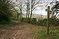 Bridleway to Holmbush - geograph.org.uk - 1265627.jpg