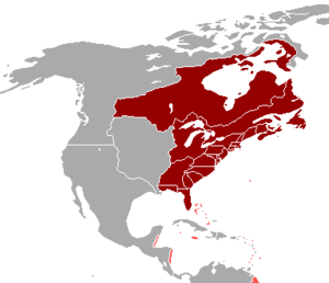 British America - British colonies in North America which were part of British America (red), and the mostly island colonies of the British West Indies held by the British Crown (pink)