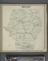 Broome (Township) NYPL1602925.tiff