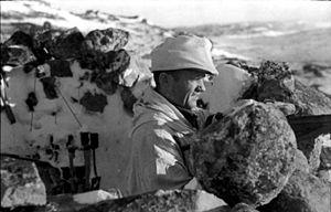 Армія лапландія