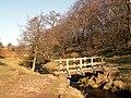 Burbage Brook footbridge - geograph.org.uk - 688327.jpg