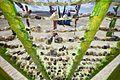 Burning Man 2012 (7925993392).jpg