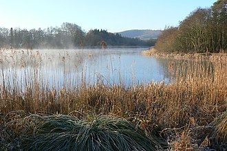 Sussex Wildlife Trust - Image: Burton Mill Pond geograph.org.uk 1260268