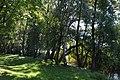 CHOSZCZNO - panoramio (187).jpg