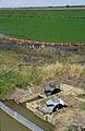 CSIRO ScienceImage 4018 Dethridge wheels measuring water consumption for rice crop in the Murrumbidgee Irrigation Area NSW.jpg