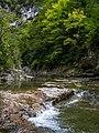 Cañón de Añisclo - Río Bellós 09.jpg