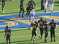 Cal celebrates TD at 2008 Big Game.JPG