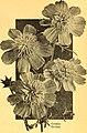 California gardening (1934) (20326738110).jpg