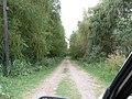 Camino a la costa de Magdalena - panoramio.jpg