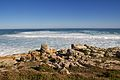 Cape of Good Hope 2014 1.jpg