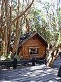 Casa bosque de arrayanes.JPG