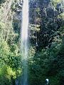 Cascada en Zapotitlán. - panoramio.jpg