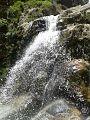Cascada en el Parque Zoológico Chorros de Milla.jpg