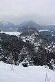 Castelo Hohenschwangau - Fussen - Alemanha (8746351700).jpg