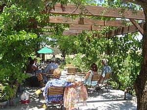 Templeton, California - Castoro Cellars Concert in Templeton