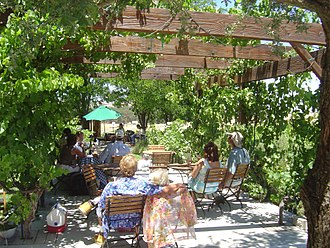 Templeton, California - Castoro Cellars Concert in Templeton