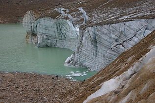 Cavell Glacier with Crevices and Annual Rings.jpg