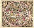Cellarius schiller 1.jpg