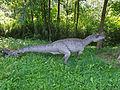 Ceratozaur - JuraPark Baltow (3).JPG