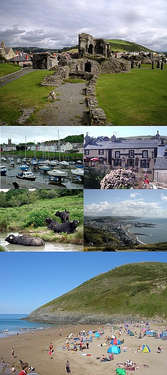 Ceredigion - Clockwise from top: Aberystwyth Castle, Dolau Inn, Aberystwyth shore, Mwnt, Water buffalo in River Teifi, Aberaeron harbour