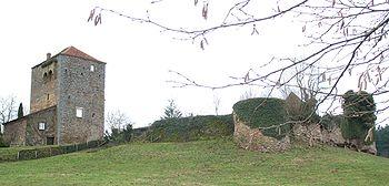 Vestiges du château de Dyo