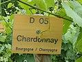 Chardonnay - panneau.jpg