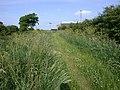 Choseley Drying Barns, from the Norfolk Coastal Path - geograph.org.uk - 20355.jpg