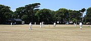 Cricket being played at Clarence Park