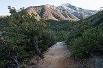 Clark Spring Trail.jpg