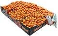 Clementines 2.jpg