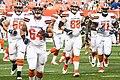 Cleveland Browns vs. New York Giants (36729595756).jpg