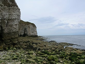 Flamborough Head - Cliffs at Flamborough Head