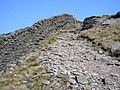 Climbing up from Littondale - geograph.org.uk - 379926.jpg