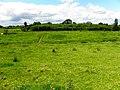 Cloncarrish Townland - geograph.org.uk - 2483567.jpg