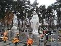 Cmentarz w Brzeźnie - panoramio.jpg