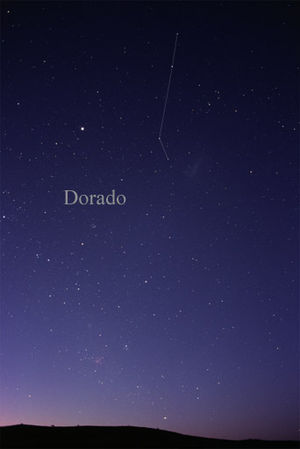 Dorado - The constellation Dorado as it can be seen by the naked eye.