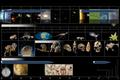 Cosmic Calendar No Text.png
