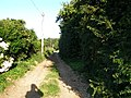 Country lane off West End - geograph.org.uk - 520801.jpg