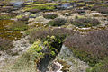 Craters of the Moon TAUPO-1169.jpg